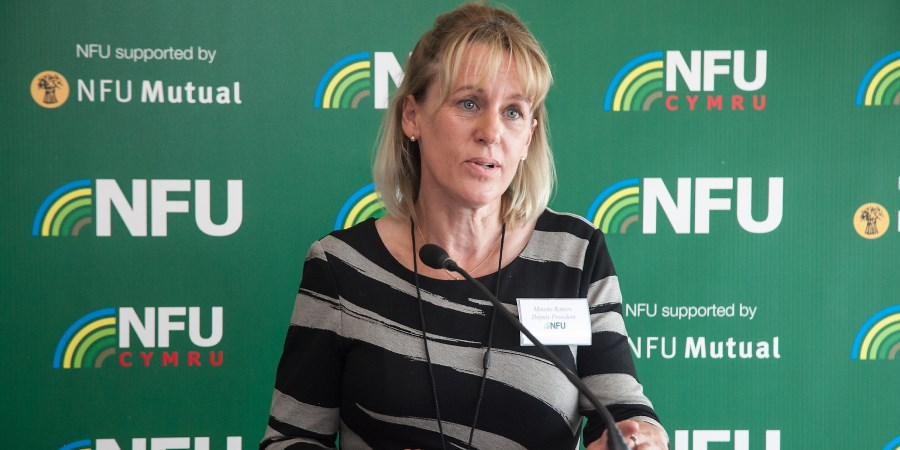 NFU responds to the Environment, Food and Rural Affairs Committee (EFRA) Report