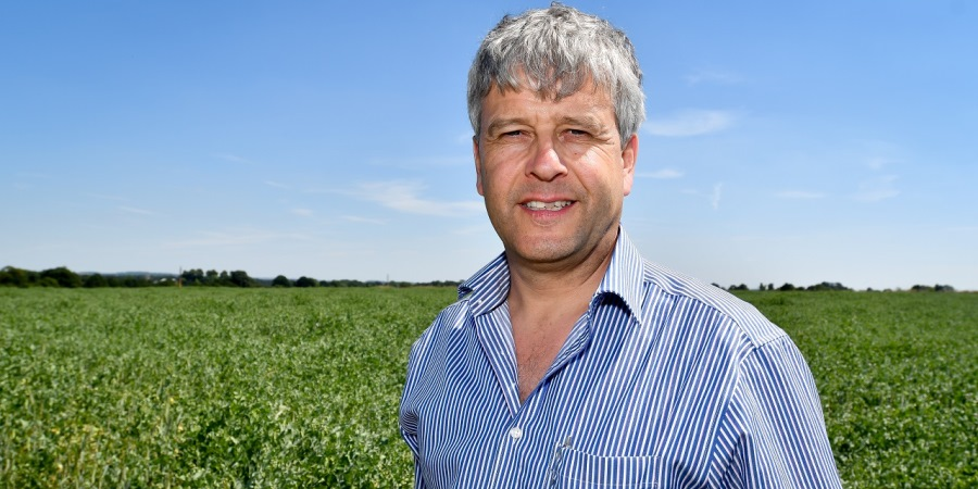 Organic sector calls for clearer Brexit