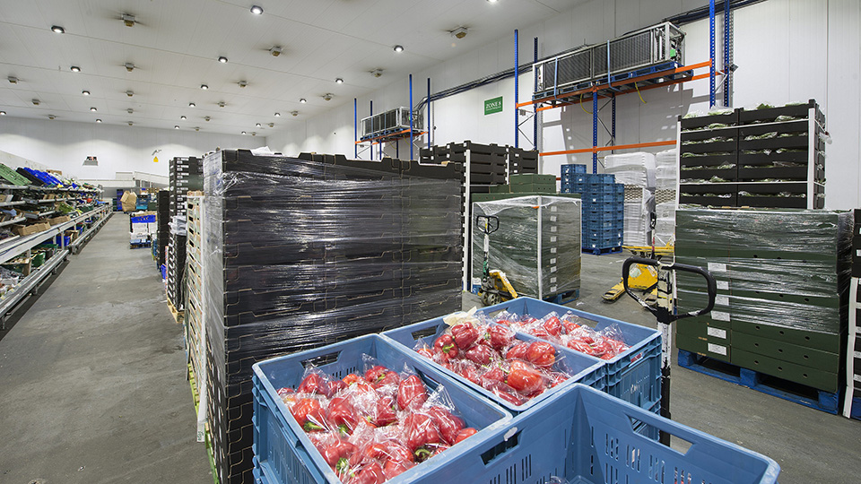 How can food stockpiling be managed amid a no-deal Brexit?