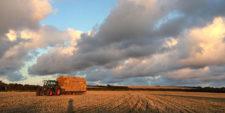 Harvesting at Slade Farm.