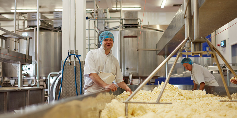 Wensleydale cheese to increase production following £17.9 million deal