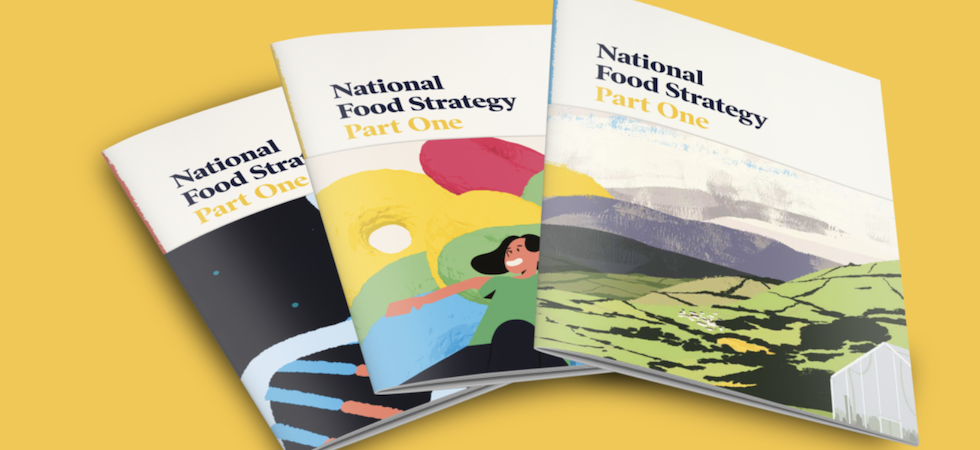 CIEH calls for stronger food standards protection in National Food Strategy
