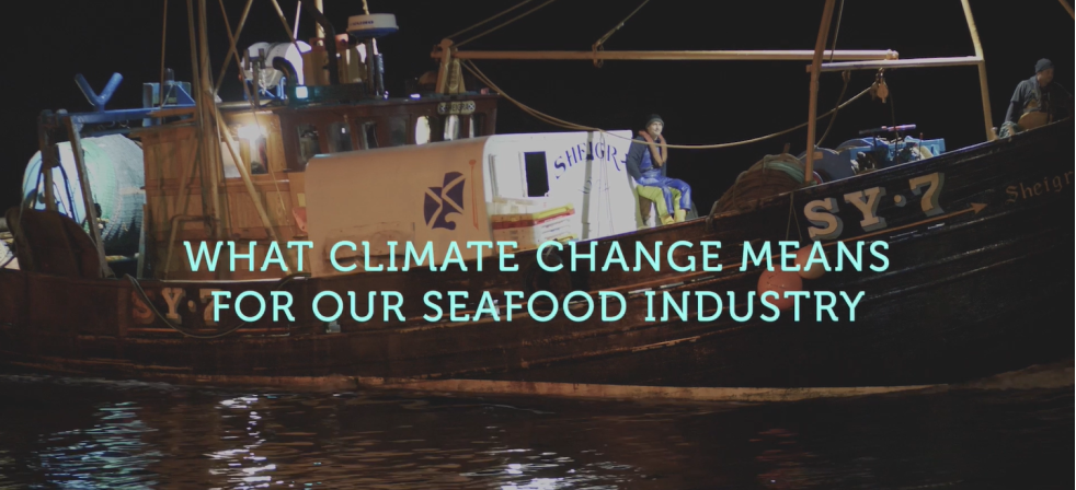 Seafood body launches climate-awareness campaign ahead of UN conference